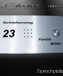 Sprechplatte Wiesbaden massiv Edelstahl